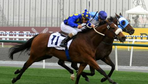 In pictures: Dubai World Cup 2011