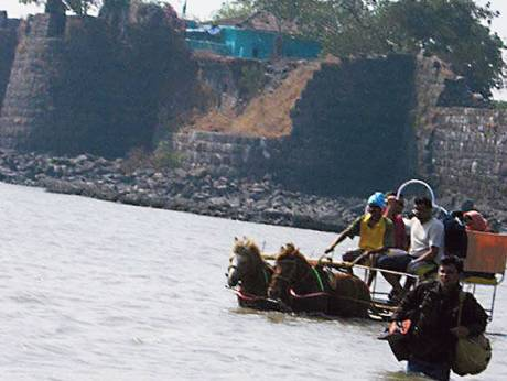 Horses draw buggies with tourists from Alibaug to Kolaba fort in Maharashtra state